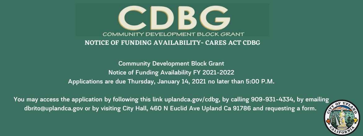 Slide: The City will hold a Public Hearing before City Council on November 23, 2020 at 7_00pm at City Hall, 460 N. Euclid Avenue to consider the Draft Substantial Amendment No. 2 to the 2020-2021 Action Plan.  (1).png
