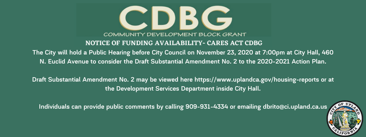 Slide: The City will hold a Public Hearing before City Council on November 23, 2020 at 7_00pm at City Hall, 460 N. Euclid Avenue to consider the Draft Substantial Amendment No. 2 to the 2020-2021 Action Plan. Draf.png