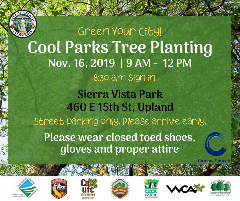 Cool Parks Tree Planting