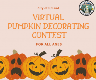 Virtual Pumpkin Decorating Contest For All Ages