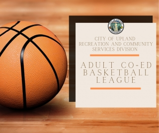 2020 Adult Co-Ed Basketball League