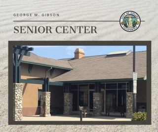Gibson Senior Center Services